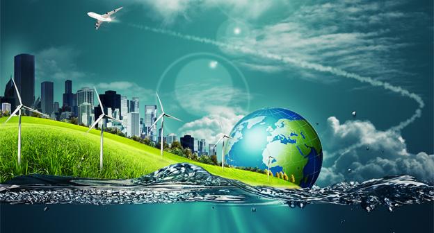 Wood Fibre Studies Contract Energy Services